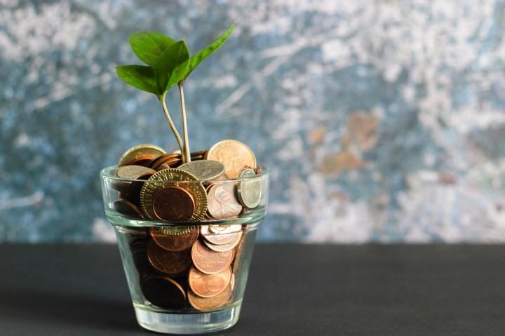 Money. Image: Micheile Henderson on Unsplash